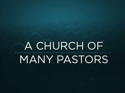 15Feature-A-Church-of-Many-Pastors-1007